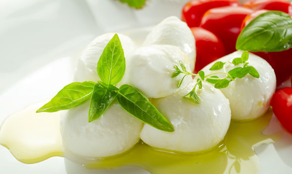 Flor de Burgos mozzarella fresh cheese still life photo