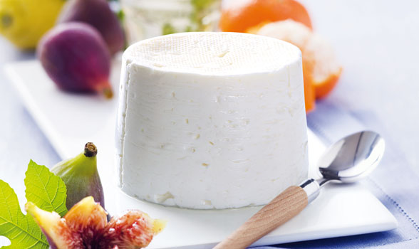 bodegon de un queso fresco