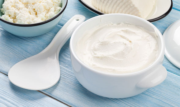 Cream fresh cheese Spreadable cheese still life image, general catalogue