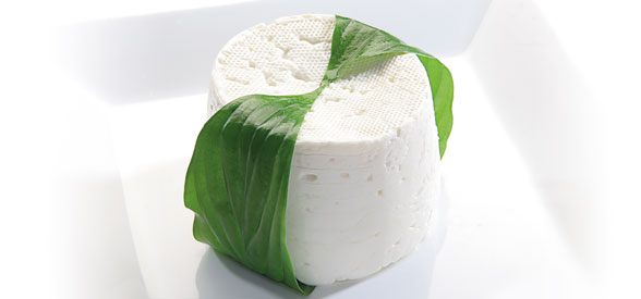 Bodegon queso fresco tradicional