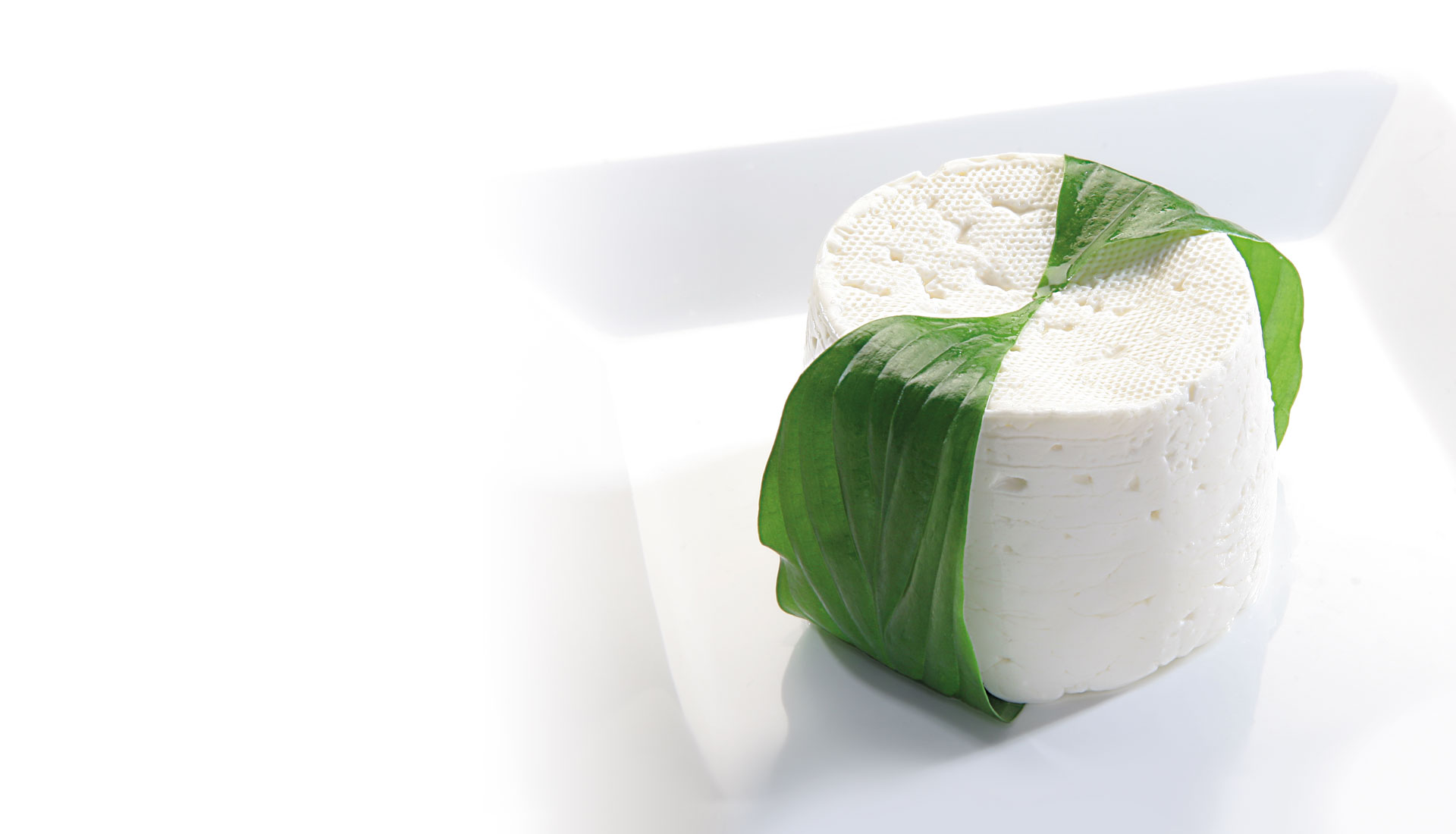 TRADITIONAL BURGOS FRESH CHEESE