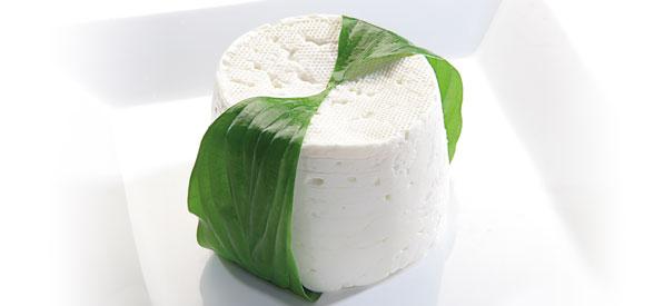 Bodegon queso fresco tradicional