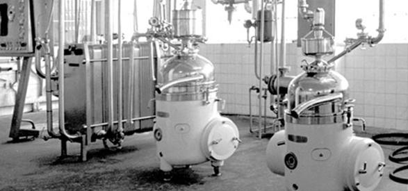 Interior fabrica flor de burgos