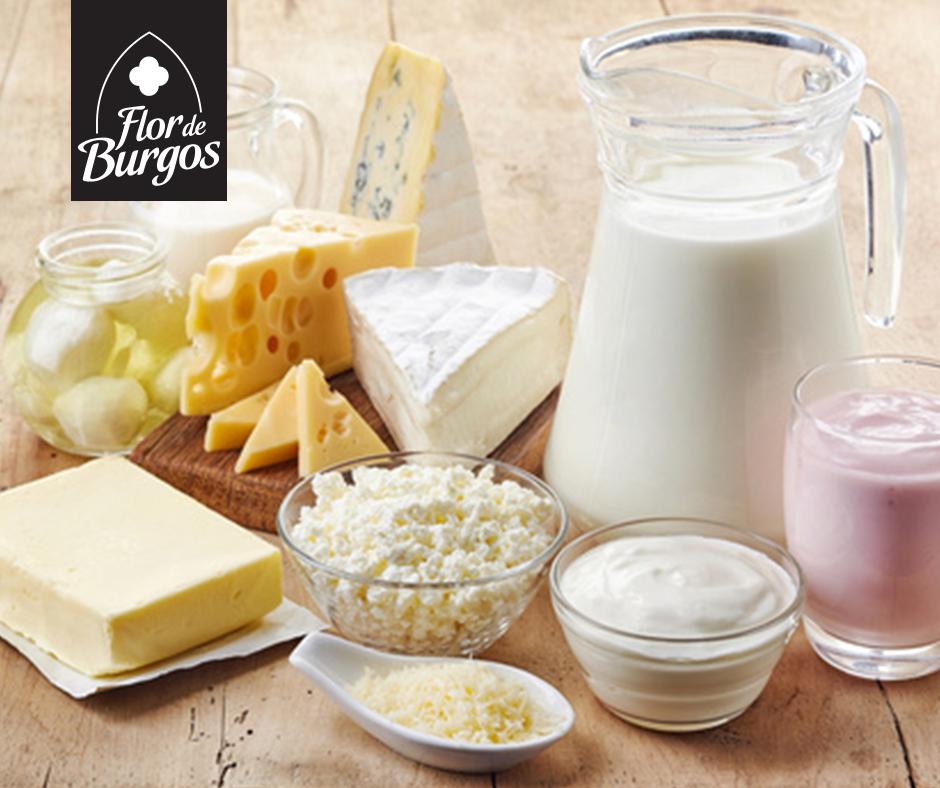 Beneficios del queso salud en una porci n diaria de este alimento - Beneficios queso de cabra ...