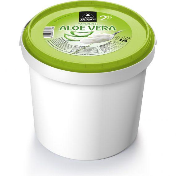 fdb-yogur-con-aloe-vera-gran-formato-5kg-tapa